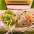 Яйца с панделки